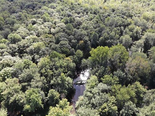 Clarendon Township, 74 Acres : Homer : Calhoun County : Michigan