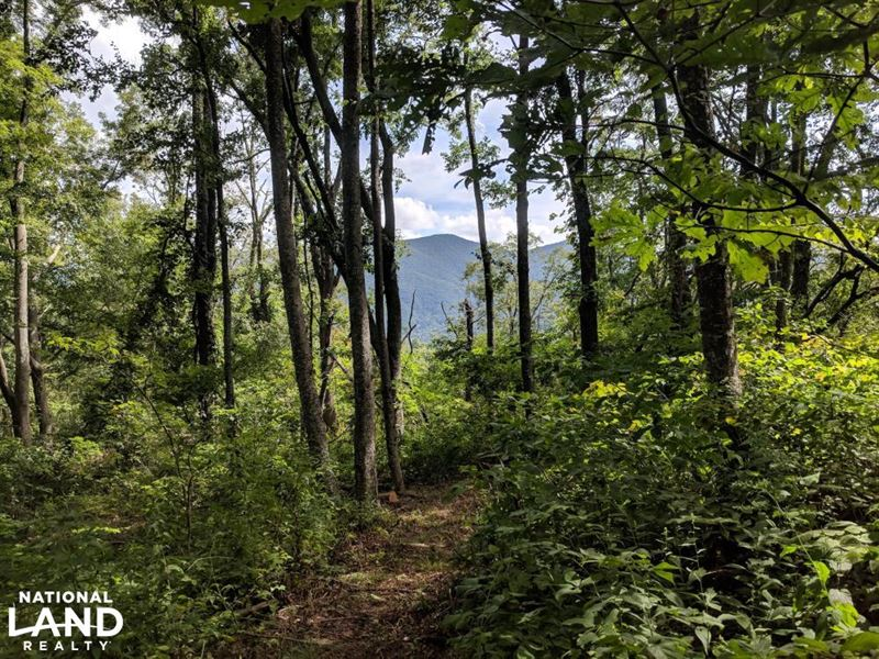 Incredible Panoramic Views of Weste : Asheville : Buncombe County : North Carolina