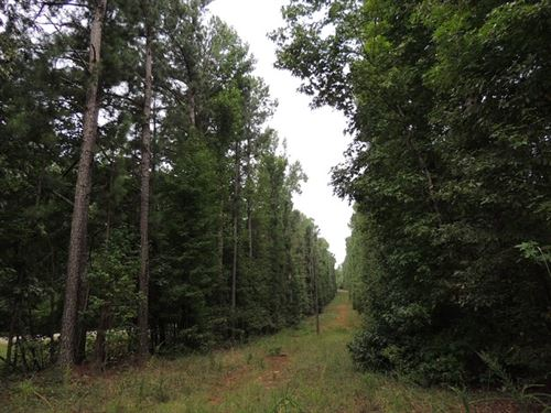 18.65 Ac Strickland Town Road : Luthersville : Meriwether County : Georgia