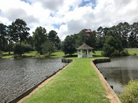 357 Acre Ranch Paradise : Monticello : Lawrence County : Mississippi