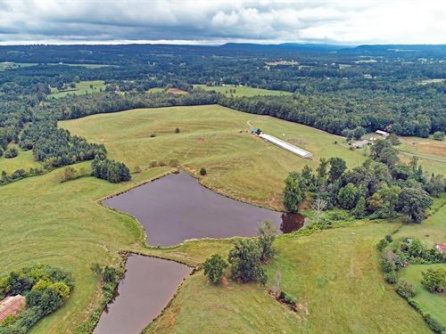 Gorgeous Turn Key Cattle Farm : Susan Moore : Blount County : Alabama