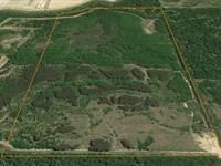 Bull Creek Wildlife Haven : Searcy : White County : Arkansas