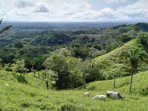 Very Large Cattle Ranch Parrita : Parrita : Costa Rica