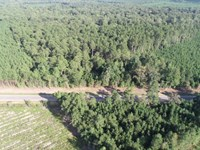Timber Land Camp Site Fordyce, AR : Bearden : Dallas County : Arkansas