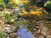 Hunting Retreat Arkansas, Lakes : Clarkridge : Baxter County : Arkansas