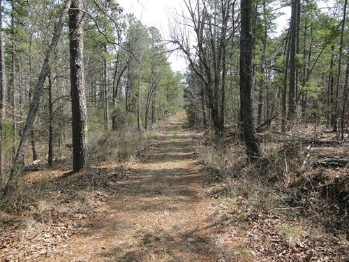 Arkansas Owner Finance Acreage : Brockwell : Izard County : Arkansas