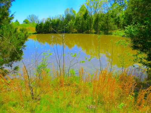Vacant Land Mammoth Spring Fulton : Mammoth Spring : Fulton County : Arkansas