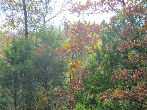 Land For Sale Near Spring River : Mammoth Spring : Fulton County : Arkansas