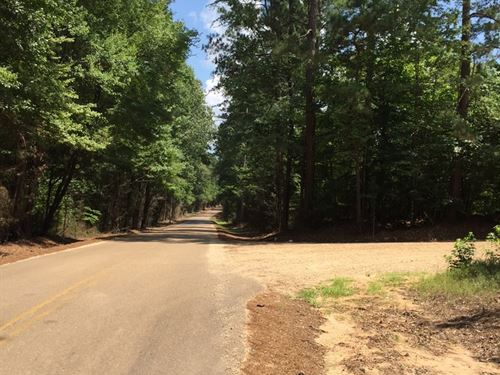 Saxon Estate Land Sale 08/16/2018 : Smackover : Union County : Arkansas