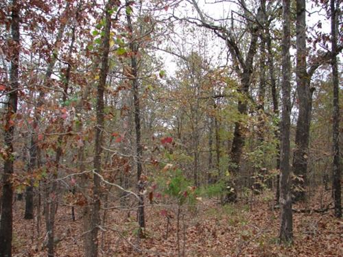 Arkansas Recreational Acreage : Sturkie : Fulton County : Arkansas