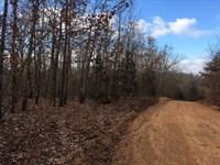 Arkansas Ozarks Small Acreage : Viola : Fulton County : Arkansas