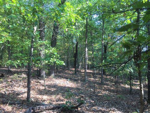 Timberland Property Yellville : Yellville : Marion County : Arkansas