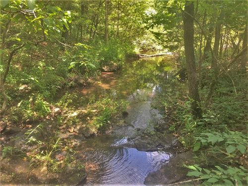 30 Acres on Branch Creek For Sale : Yellville : Marion County : Arkansas