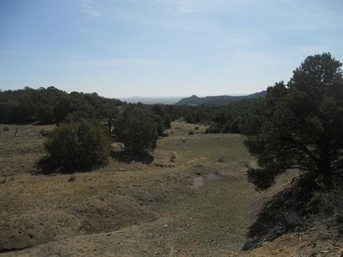 Open Meadows Mountain Land Southern : Aguilar : Las Animas County : Colorado