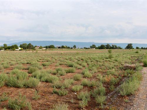 19 Acre Building Site Irrigation : Austin : Delta County : Colorado