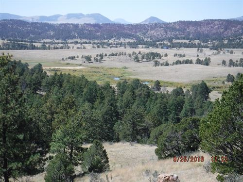 Colorado Acreage Lake Stream Access : Florissant : Teller County : Colorado