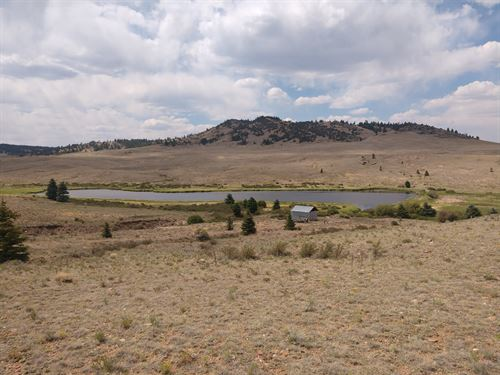 Fishing Pond Stream Acreage : Hartsel : Park County : Colorado