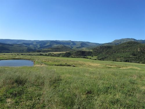 Irrigated Vacant Acreage Grand : Collbran : Mesa County : Colorado
