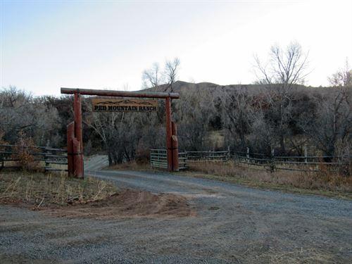 Colorado Mountain Cattle Ranch : Collbran : Mesa County : Colorado