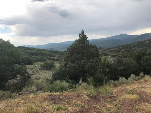 Vacant Acreage That Borders Blm : Collbran : Mesa County : Colorado