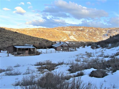 Creekside Acreage That Borders Blm : Collbran : Mesa County : Colorado