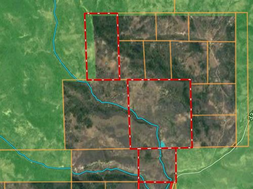 Hunting Acreage Borders National : Collbran : Mesa County : Colorado