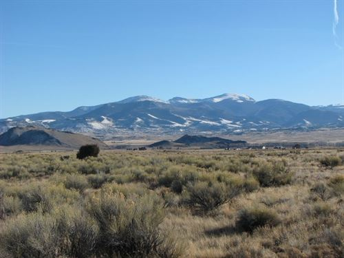40 Acres In The La Garita Mountains : Del Norte : Rio Grande County : Colorado