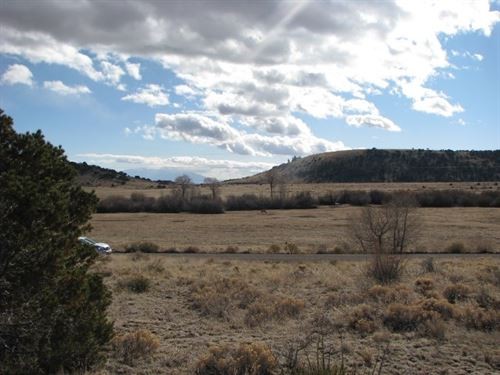 Tree Covered 36+ Acre Parcel San : Del Norte : Rio Grande County : Colorado