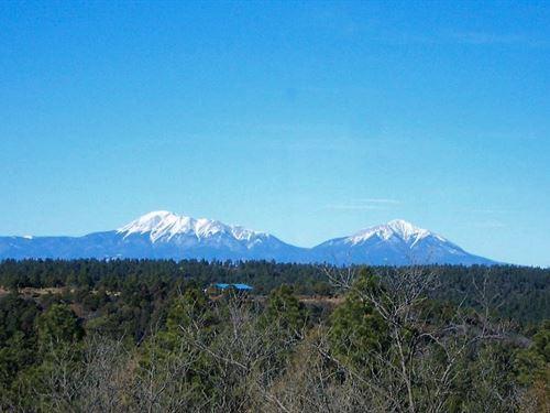 35 Acre Mountain Parcel Trinidad : Trinidad : Las Animas County : Colorado