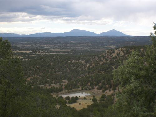 42 Acres Pond Meadow Trinidad : Trinidad : Las Animas County : Colorado
