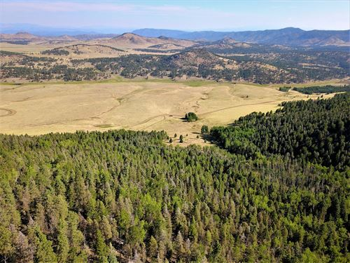 94 Acre Alpine Homestead-1080 Eagle : Westcliffe : Custer County : Colorado