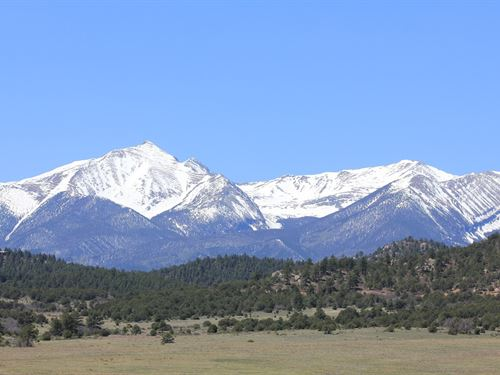 Land Historic Beckwith Mountain : Westcliffe : Custer County : Colorado