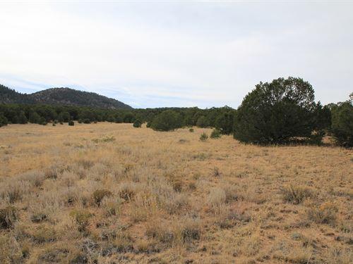 Land Westcliffe Colorado, Custer : Westcliffe : Custer County : Colorado