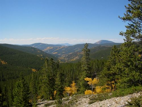 Off The Grid Mountain Property : Whitepine : Gunnison County : Colorado