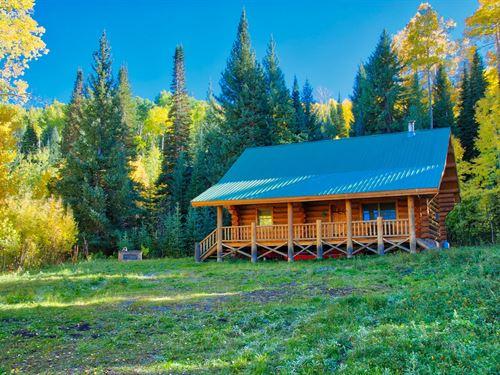 Log Cabin Western Colorado Acreage : Montrose : Colorado