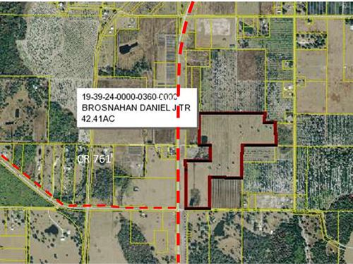 42 Acre Commercial Property Highway : Arcadia : Desoto County : Florida