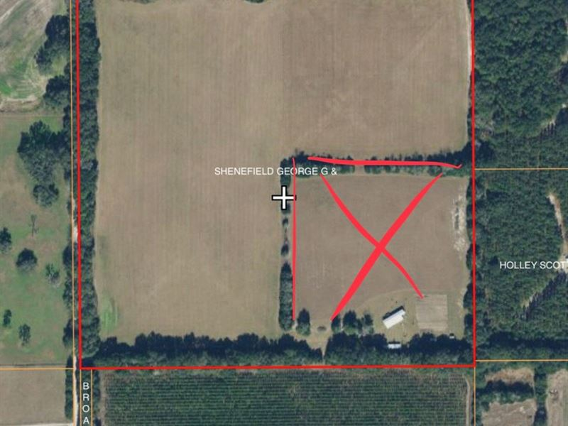 Vacant Land Pasture Bell Florida Ranch For Sale Bell Gilchrist