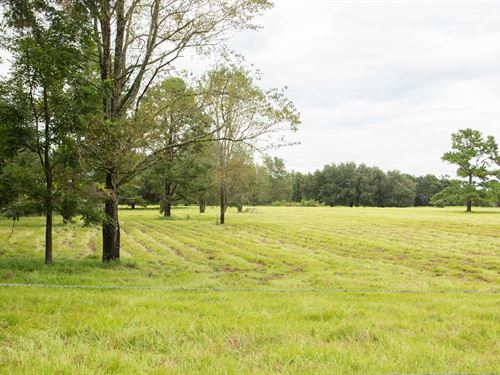 Incredible Hunting Property : Branford : Suwannee County : Florida
