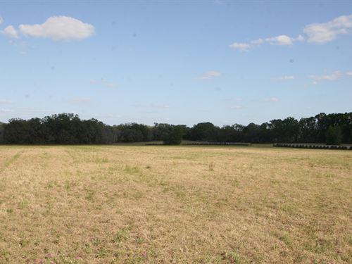 Pasture Land For Sale North Florida : Lake City : Columbia County : Florida