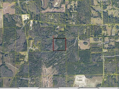 Vacant Land In North Florida : Lake City : Columbia County : Florida