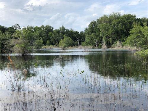 Hunter's Paradise, Trenton Florida : Trenton : Gilchrist County : Florida