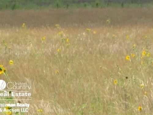 Kansas Farm Land Grant County : Ulysses : Grant County : Kansas