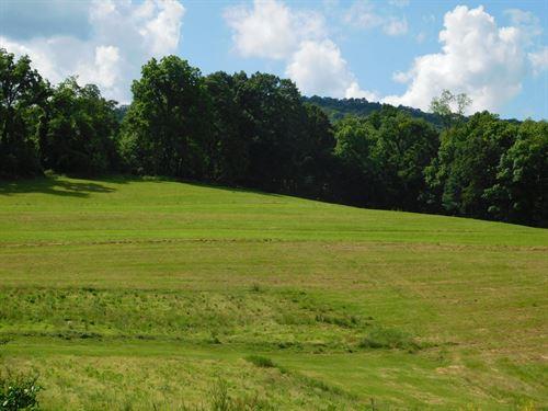 Flintstone MD Land For Sale : Flintstone : Allegany County : Maryland