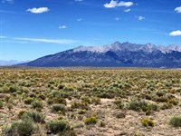 Absolute Land Auction : Alamosa : Alamosa County : Colorado