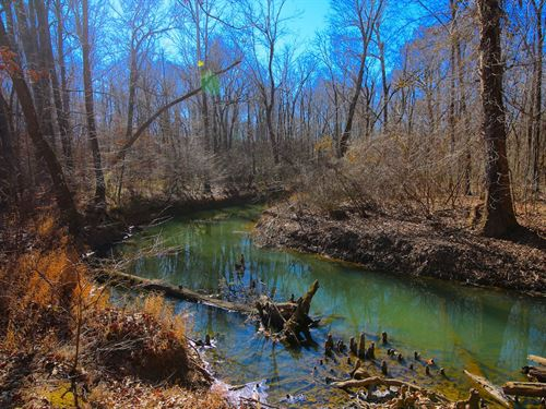 Farm Timber Property Ripley County : Doniphan : Ripley County : Missouri