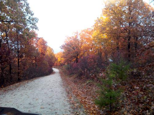 Wooded 10.67 Acres : Eldridge : Laclede County : Missouri