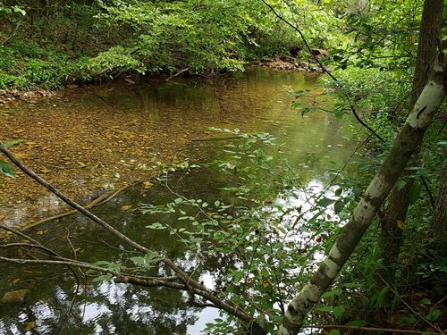 Hunting Property, Joins Gov't Land : Eminence : Shannon County : Missouri