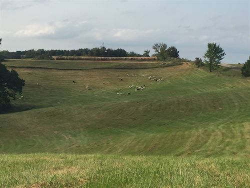 77 Acres Pasture Ground For Sale : Ethel : Macon County : Missouri