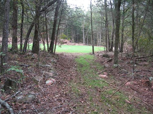 42.79 Acres, All Wooded : Fredericktown : Madison County : Missouri
