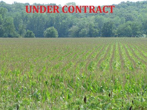Missouri Farmland, Row Crop Farm : Bible Grove : Schuyler County : Missouri